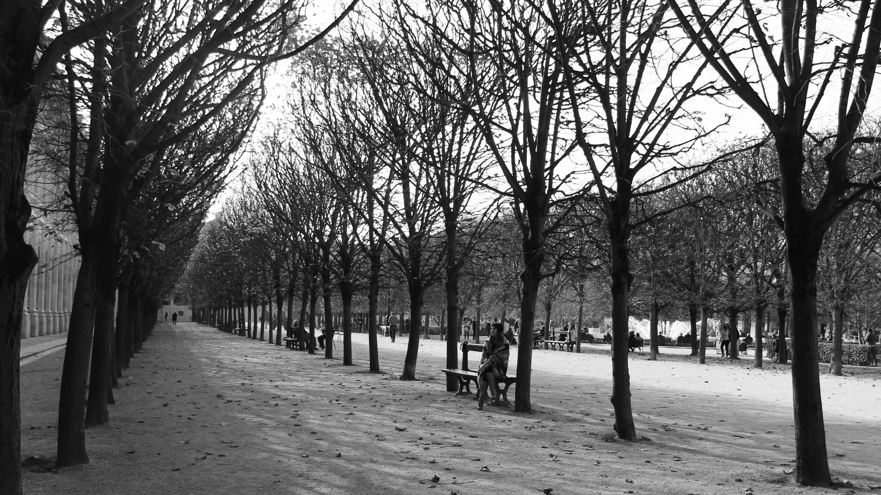 jardins du louvre blog tendance paris