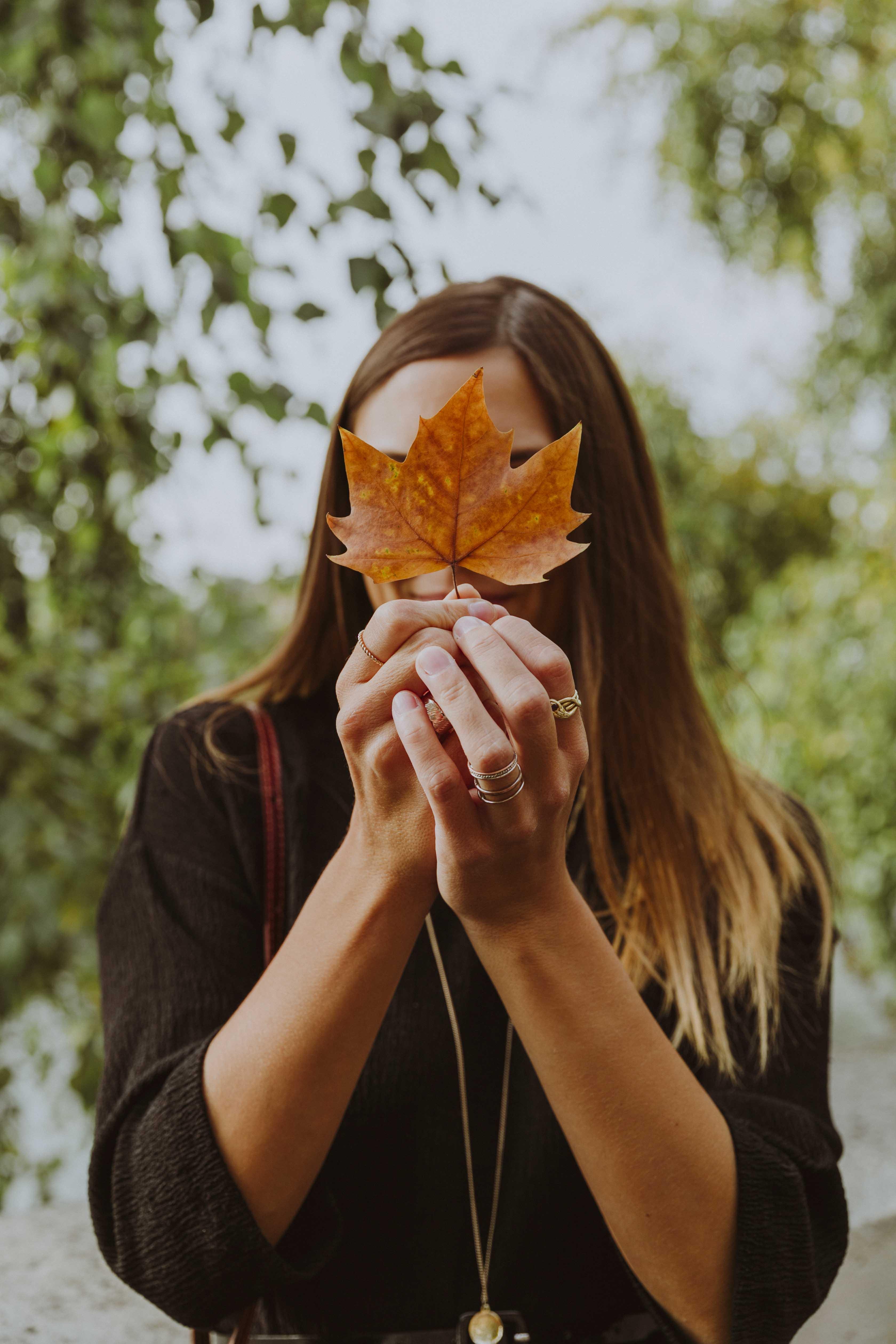 jolie photo automne
