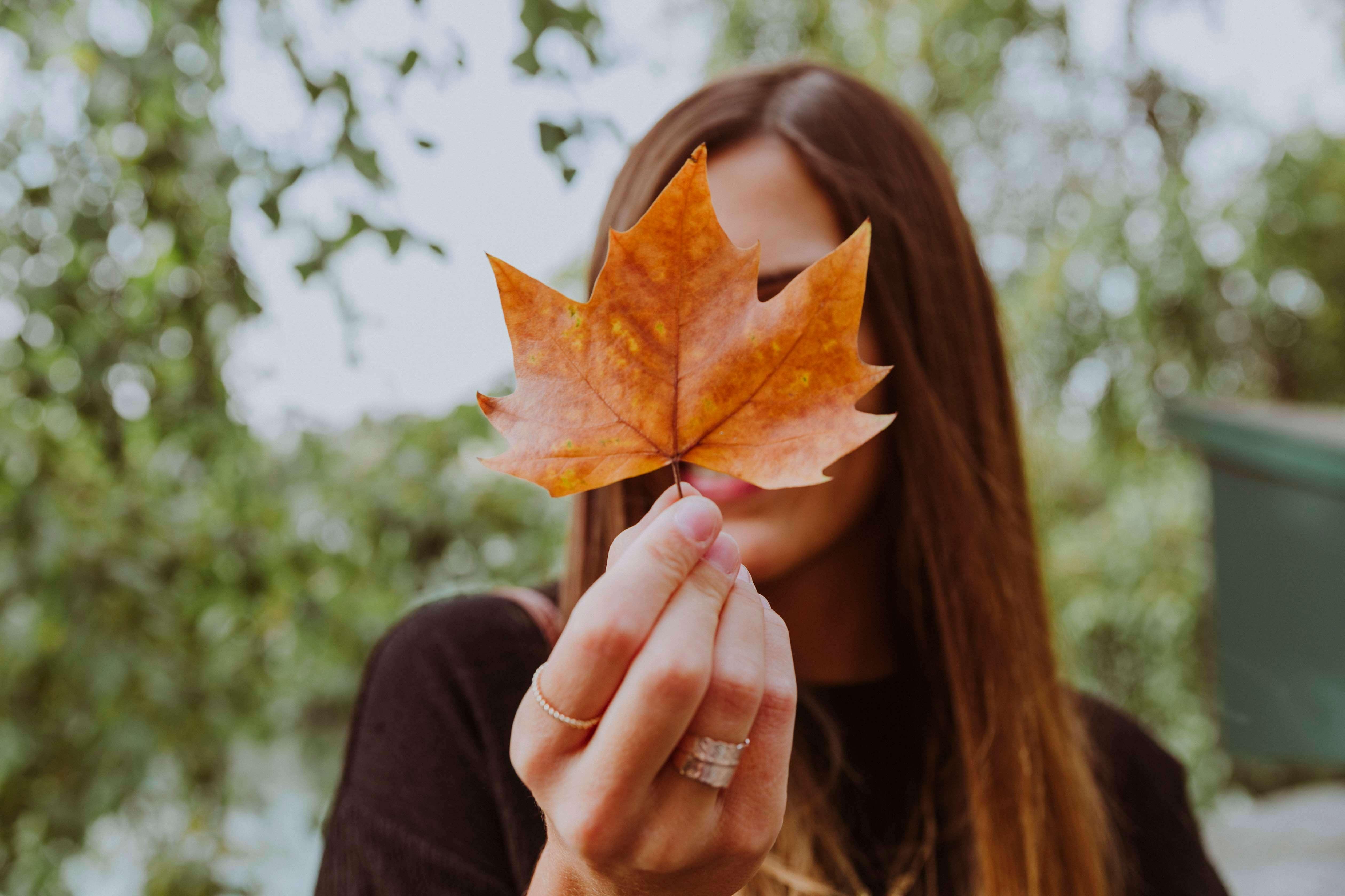 10 raisons d 'aimer l automne
