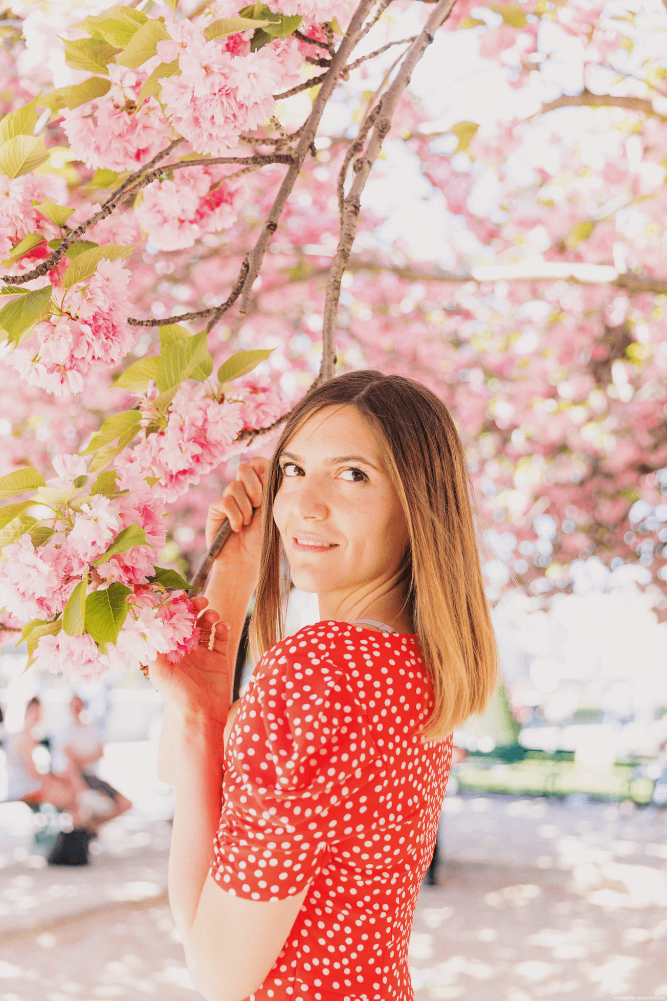 robe tendance pour le printemps