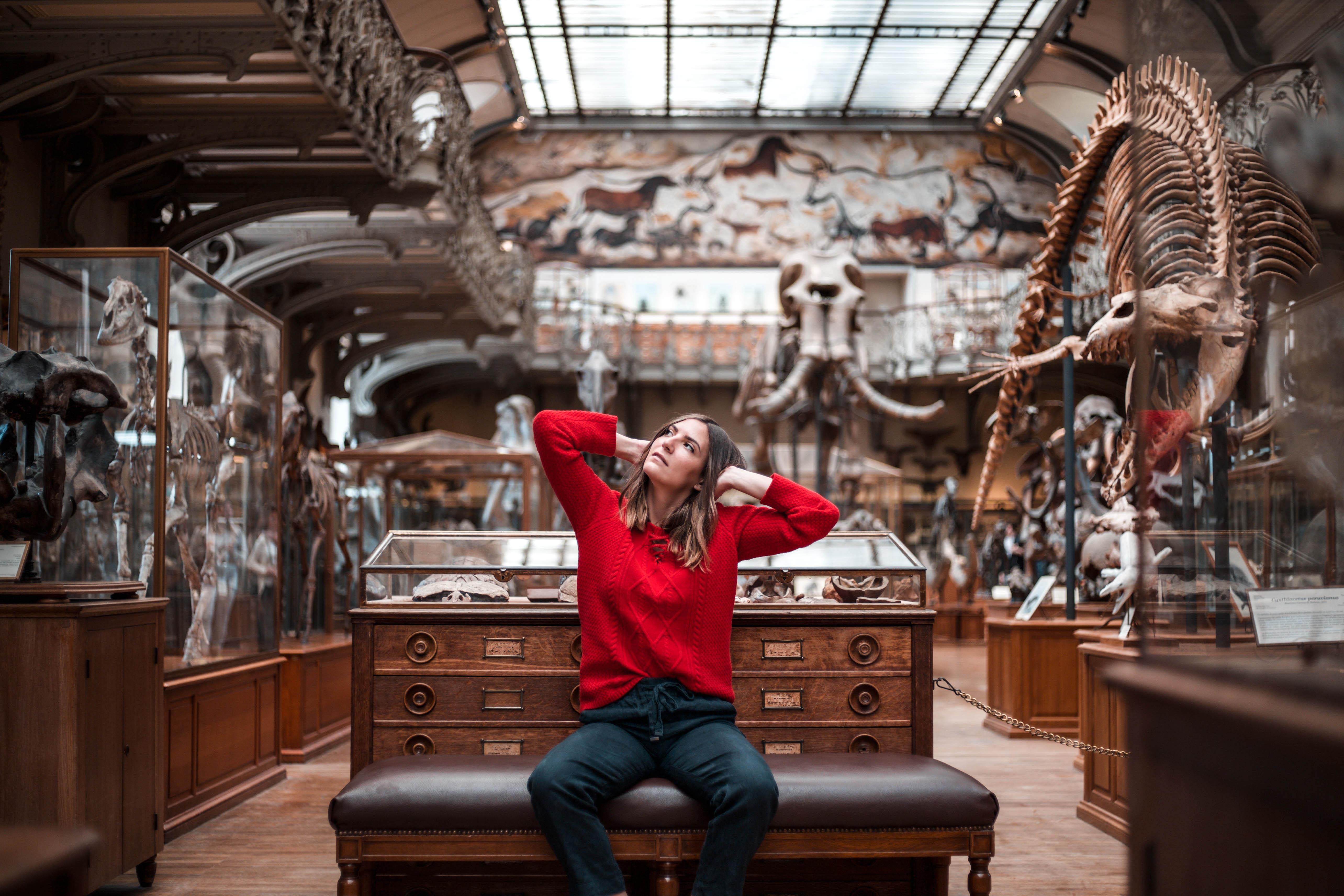 shooting museum d histoire naturelle paris